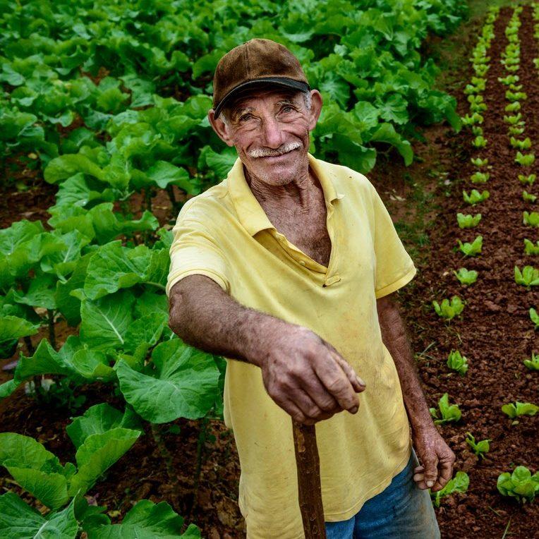 Estados recebem recursos para compras da agricultura familiar