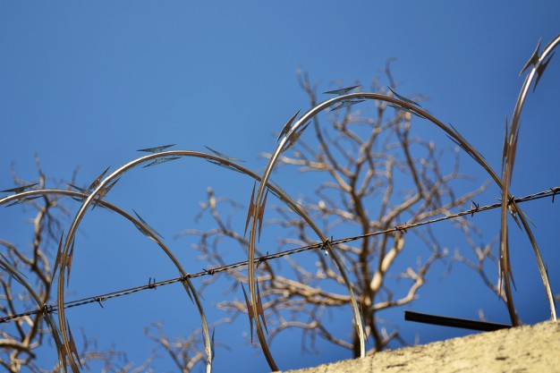 Projeto promove a reinserção de pessoas que passaram pelo cárcere