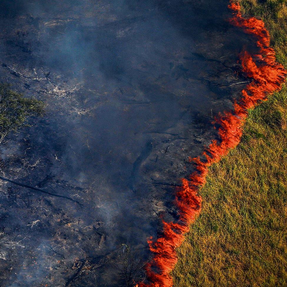 Queimadas: 17,5% do Brasil já queimou nos últimos 20 anos