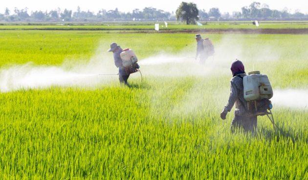 Água batizada: agrotóxico contamina redes de abastecimento