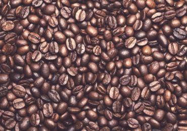 Produtor de café deve conter Covid-19 e coibir trabalho escravo