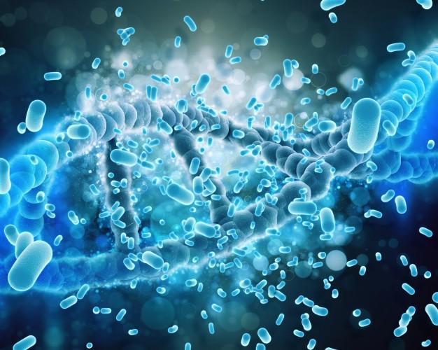 RFI: Conheça a proteína que o coronavírus usa para penetrar na célula