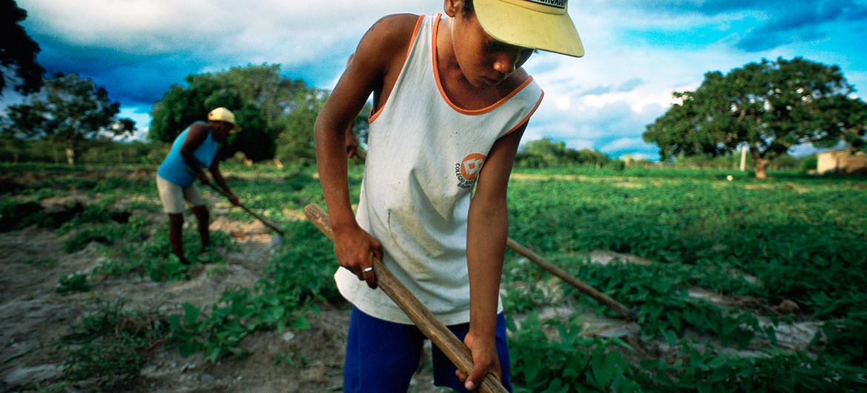 Mais de 100 países interrompem serviços de assistência social