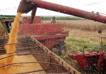 Mercado de seguros destaca importância da agroindústria no Brasil