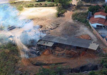 Amazônia: desmatamento sobe 25% e preocupa governo