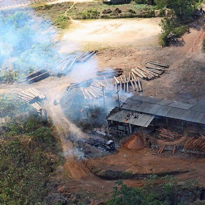 Amazonas e Pará encabeçam lista do desmatamento na Amazônia