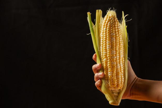 Governo zera imposto de importação de soja e milho