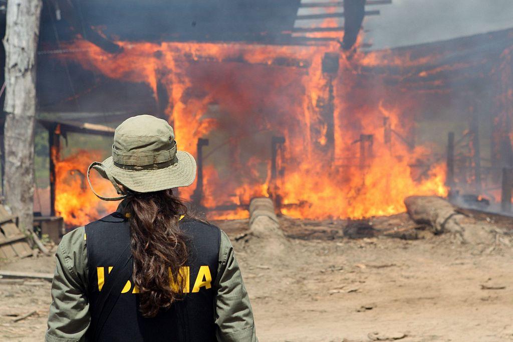 Incêndios na Amazônia só são possíveis com ação humana