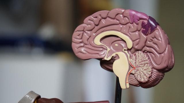 Trombose é principal complicação neurológica da Covid-19