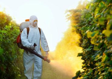 Brasil tem cabo de guerra pela liberação de agrotóxicos
