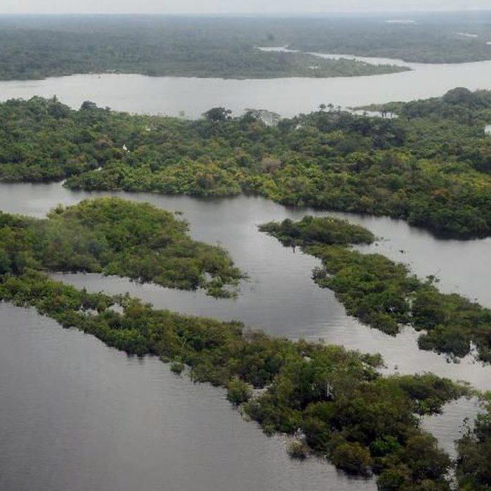 Congresso Mundial da Natureza pede preservação de 80% da Amazônia