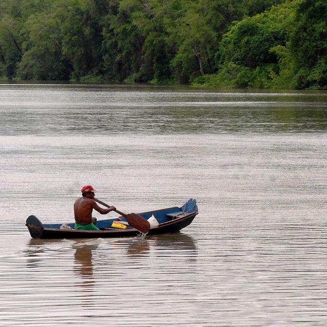 Ambientalistas defendem sustentabilidade e preservação no Brasil