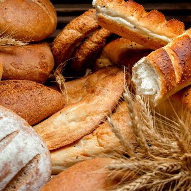 Dia do Pão: curiosidades sobre um dos alimentos mais antigos