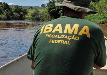 CNJ e Ibama fecham acordo para troca de dados na defesa ambiental