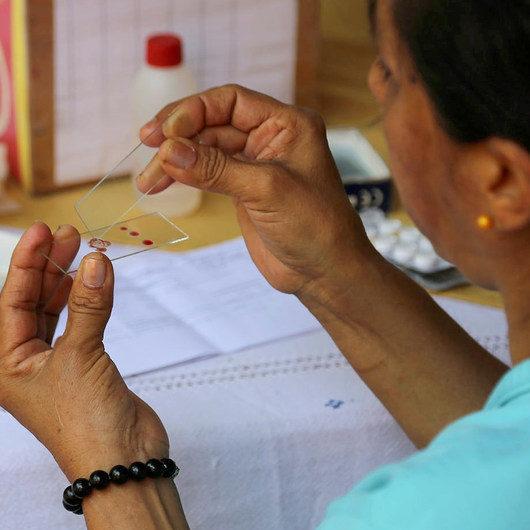 Brasil ganha prêmio da ONU sobre combate à malária em época de pandemia