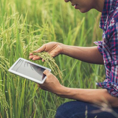 Peso econômico do agronegócio atrai investimentos em tecnologia