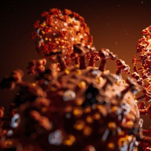 Morre no RJ infectado com nova variante do coronavírus