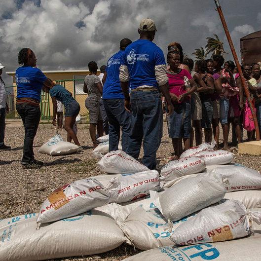 Agência da ONU ressalta disparidades no preço dos alimentos entre países
