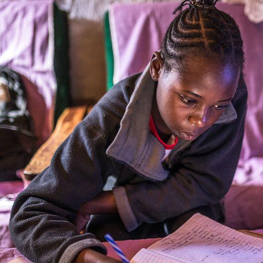 ONU celebra resiliência na educação em face à pandemia