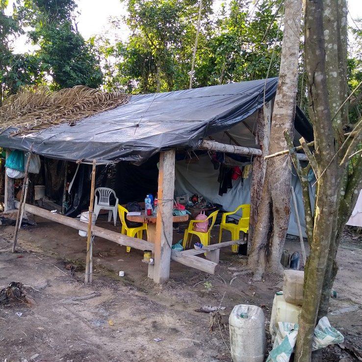 Homens e crianças são resgatados de condições escravas no Pará