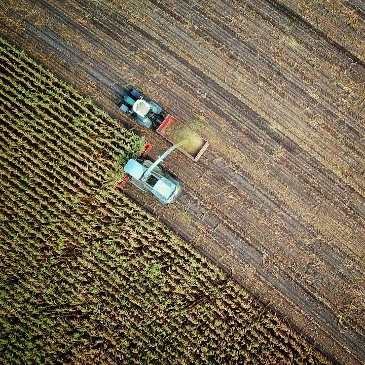 Crise hídrica já ameaça agricultura e florestas dos EUA