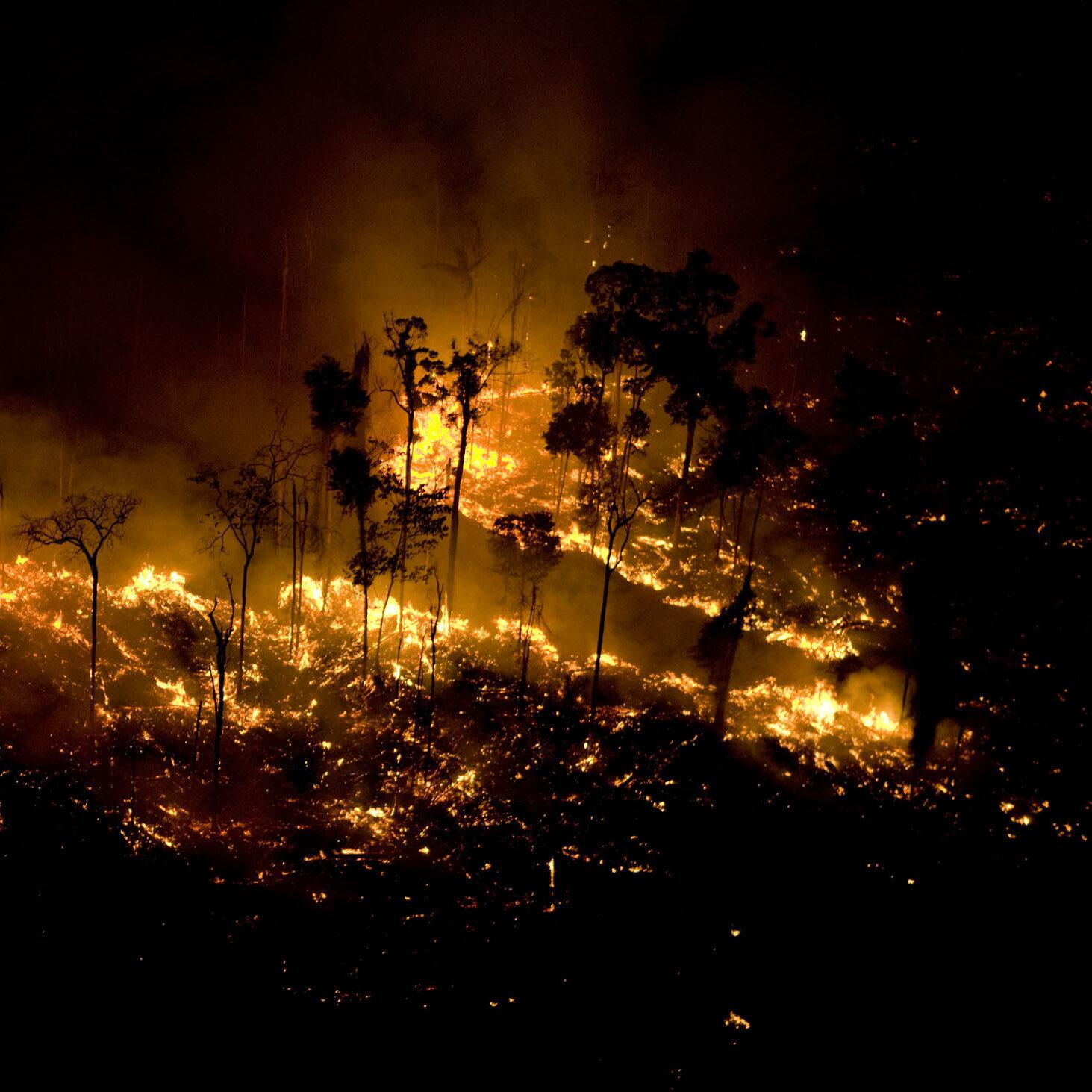 Governo lança operação de combate a incêndios florestais